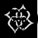 Yoga Alliance anerkannt und zertifiziert